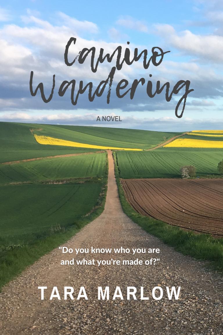 Camino Wandering 6x9 cover